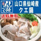 クエ鍋(あら鍋)仙崎産,送料無料