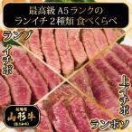 送料無料 A5ランク 山形牛 ステーキ「ランイチ2種類」食べくらべセット 200g×2枚 総量400g 黒毛和牛 母の日 ギフト 贈答用 御祝い