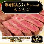 senshusaryo_steak-yamagata-shinshin100-1pack