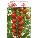 ミニトマト ネネの種12粒入り 水耕栽培 おすすめ