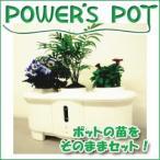 「NHKまちかど情報室(2012/11/8放映)」で紹介された、水耕栽培が出来るプランター『パワーズポット』を【送料無料・代引手数料無料】
