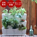 おうちミニガーデン・バーティカルタイプ家庭菜園 プランター ガーデニング おしゃれ ベランダ菜園 かわいい テラス菜園