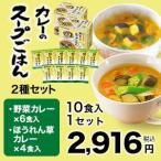 【世田谷自然食品公式】カレーのスープごはん2種セット(野菜カレー6食+ほうれん草カレー4食)10食入り