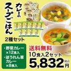 【世田谷自然食品公式】カレーのスープごはん2種セット(野菜カレー6食+ほうれん草カレー4食)10食入り×2セット(計20食)