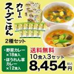 【世田谷自然食品公式】カレーのスープごはん2種セット(野菜カレー6食+ほうれん草カレー4食)10食入り×3セット(計30食)(まとめ買い割引適用)