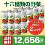 【世田谷自然食品公式】毎日の健康習慣 十六種類の野菜 30本入×2セット(計60本)