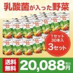 【世田谷自然食品公式】乳酸菌が入った野菜 30本入×3セット(計90本)(まとめ買い割引適用)