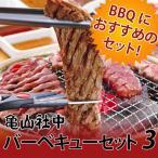 【送料無料】【代引き不可】亀山社中 焼肉 バーベキューセット 3 はさみ・説明書付き