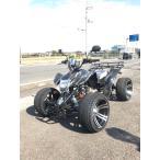 ATV バギーカスタム LIFANエンジン搭載110cc 14インチ