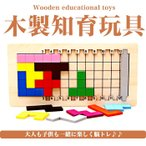知育玩具 立体パズル 脳トレ パズル テトリス ブロック  ゲーム 遊び ゲーム