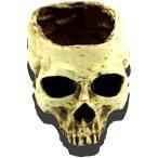 ガイコツ インテリア オシャレ 植木鉢 プランター 置物 小物入れ ドクロ 頭蓋骨(白Medium)
