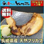 長崎県産 天然鰤のブリカマ 1カマ200g以上×3個セット 鰤 ぶり ぶりかま