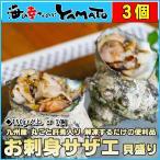 九州産 お刺身サザエ貝盛り 150g以上×3個 丸ごと肝煮入 栄螺 さざえ お造り