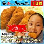牡蠣フライ 2Lサイズ(45g x10粒入り) カキフライ 冷凍食品 超特大 広島県産 カキ かき