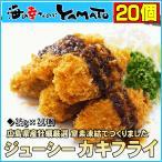 広島県産ジューシー牡蠣フライ 25g×20個 カキフライ かき 惣菜