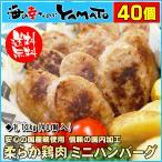 敬老の日 ギフト やわらか鶏肉ハンバーグミニ 1.12kg 40個入り 鳥 とり トリ 惣菜 お弁当 冷凍