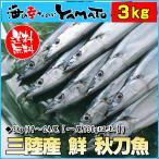三陸産 鮮 秋刀魚 1尾130g以上保証 総重量3kg(19〜24尾入が目安となります) 生さ...