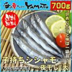 鱼 - 訳あり 子持ちシシャモ(大) 一夜干し 850g 約45尾前後入 ししゃも 柳葉魚 干物