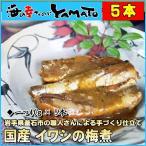 沙丁魚 - 国産イワシの梅煮 30g×5本入り 冷凍食品 簡単調理 いわし 鰯