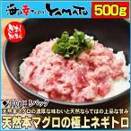 天然本マグロの極上ネギトロ 100g×5パック 500gセット 鮪 まぐろ 海鮮 寿司 敬老の日 残暑見舞い ギフト