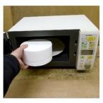 アートボックス (電子レンジでガラスを溶かす超小型電気炉)