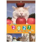 学研ステイフル 2021年 かご猫 カレンダー 壁掛け DM12002