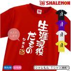 名入れ プレゼント Tシャツ 生涯現役だもの 赤 黒 白 紫 黄 敬老の日 誕生日 還暦 古希(DMT)/D23A/