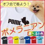 おもしろTシャツ(選べる8色)ポメラニアン・面白いパロディジョークロゴスポーツTシャツ(綿)/C3/ シャレもん