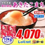 新米 愛知県産あきたこまち 10kg(5kg×2) 平成29年産 送料無料(一部地域除く)