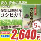 安心の農薬節減米 愛知県産コシヒカリ 5kg 平成29年産 送料無料(一部地域除く)