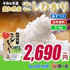 新米 愛知県産コシヒカリ 5kg 平成29年産 送料無料(一部地域除く)