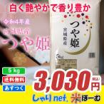 つや姫 お米 米 白米 5kg  令和1年産 送料無料 (一部地域除く) 宮城県産 【ギフト】