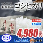 新米 新潟県産コシヒカリ 10kg(5kg×2) 平成29年産 送料無料(一部地域除く)