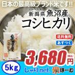新米 新潟県魚沼産コシヒカリ 5kg 平成29年産 送料無料(一部地域除く)