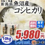 新米 新潟県魚沼産コシヒカリ 10kg(5kg×2) 平成29年産 送料無料(一部地域除く)