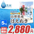 無洗米 山形県産はえぬき5kg 平成28年産≪特別栽培米≫ 送料無料(一部地域除く)
