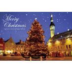 PT-040 ラエコヤ広場のクリスマスツリー/エストニア