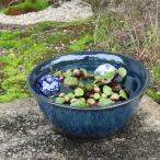 睡蓮鉢 スイレン鉢 メダカ鉢 金魚鉢 スイレン メダカ 鉢 大型 ビオトープ 屋外 陶器 su-0105 10号ブルー斑点水鉢