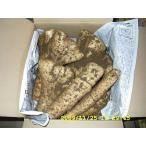 28年産農家直送、粘りが強く美味しい大和芋、業務用10kgお任せサイズ(送料込)