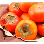 富有柿 大玉2L〜3Lサイズ お歳暮 お祝 内祝 お供え お返し お取り寄せ ギフト5kg(16〜17玉)