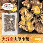 干ししいたけ 大分県産 100g 送料無料 原木栽培 (干し椎茸 干しシイタケ)