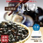 宍道湖産冷凍砂抜き大和しじみMサイズ500g×2袋【C-60】
