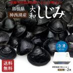 神西湖産冷凍砂抜き大和しじみLサイズ500g×2袋【C-62】