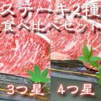 ステーキ(約180g~200g×2枚)2種類食べ比べセット