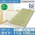 寝ござ い草 シーツ セミダブル 蒸れない カイト グリーン 約113×180cm