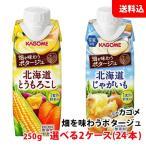 送料無料 野菜生活100ソイポタージュ250g Smoothieスムージー 選べる2ケース(24本)