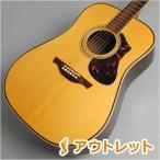 HISTORY ヒストリー NT-L3/NAT アコースティックギター 〔ビビット南船橋店〕 〔アウトレット〕