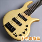 Elrick Gold Series eVolution 5-Strings アクティブ5弦ベース 〔新宿PePe店〕 〔中古〕