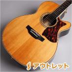 Takamine タカミネ DMP50S/NAT エレアコギター 島村楽器限定〔ビビット南船橋店〕〔アウトレット〕〔現物画像〕