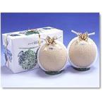 静岡産 温室マスクメロン アローマ印  2個入 送料無料 白級 計約3.0kg前後